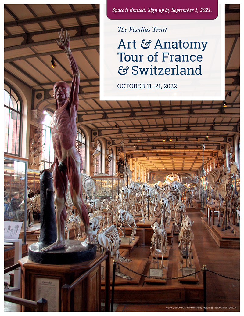 Cover page of VT Art and Anatomy Tour 2022 brochure